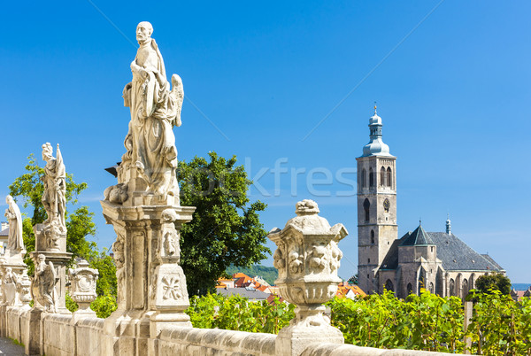 Church of St. James with vineyard at front, Kutna Hora, Czech Re Stock photo © phbcz