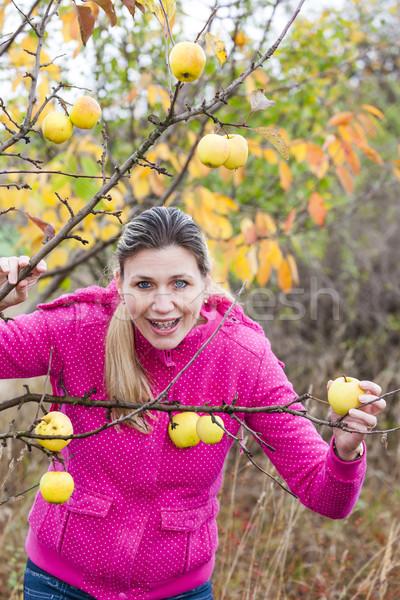 Kadın sonbahar elma ağacı yeme elma gıda Stok fotoğraf © phbcz