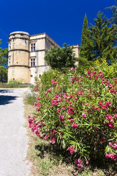 Ogród pałac Francja podróży zamek architektury Zdjęcia stock © phbcz