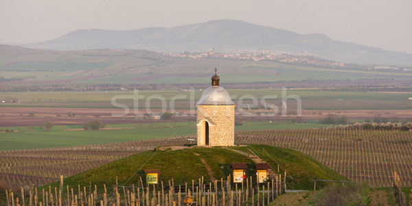 chapel with vineyard near Velke Bilovice, Czech Republic Stock photo © phbcz