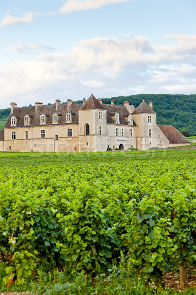 Clos Blanc De Vougeot Castle, Burgundy, France Stock photo © phbcz