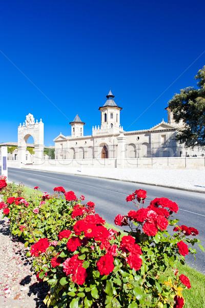 Región Francia flor edificio aumentó Foto stock © phbcz