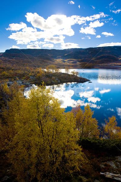 пейзаж южный Норвегия облака деревья озеро Сток-фото © phbcz