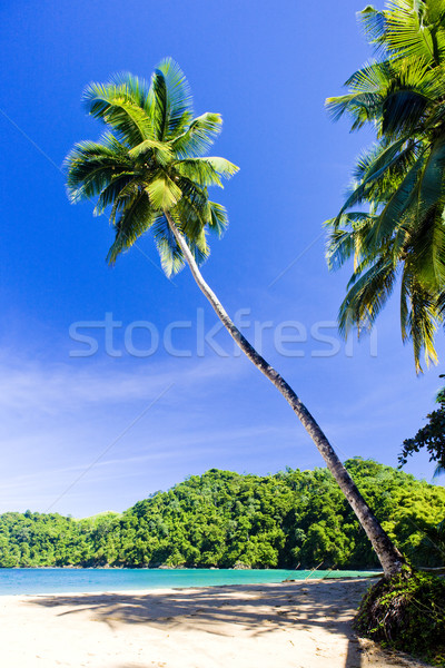 Stock photo: Englishman's Bay, Tobago