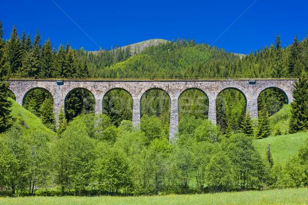 railway viaduct near Telgart, Slovakia Stock photo © phbcz
