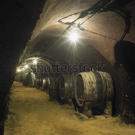 wine cellar, Winery of Oldrich Splichal and Jitka Splichalova, N Stock photo © phbcz