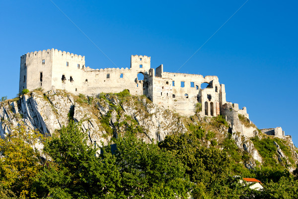 ruins of Beckov Castle, Slovakia Stock photo © phbcz