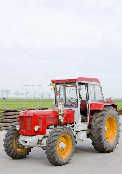 トラクター オランダ オランダ 赤 機械 屋外 ストックフォト © phbcz
