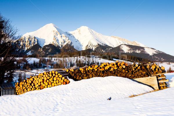 Belianske Tatry (Belianske Tatras) in winter, Slovakia Stock photo © phbcz