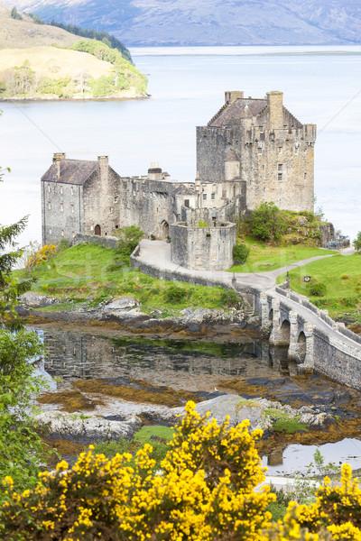 Kasteel Schotland architectuur Europa geschiedenis bush Stockfoto © phbcz