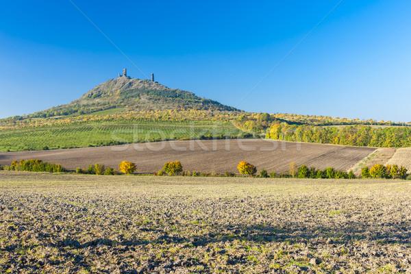 Ruiny zamek Czechy budynku krajobraz podróży Zdjęcia stock © phbcz