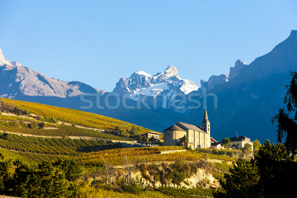 vineyards below church at Conthey, Sion region, canton Valais, S Stock photo © phbcz