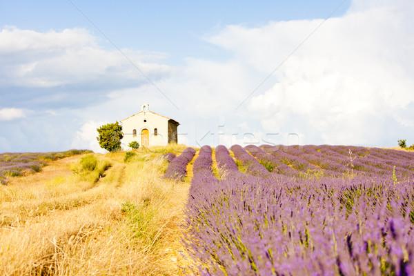 Capela campo de lavanda planalto flor edifício paisagem Foto stock © phbcz