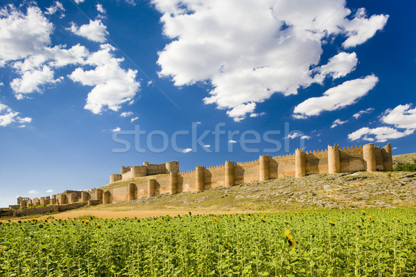 Berlanga de Duero Castle, Soria Province, Castile and Leon, Spai Stock photo © phbcz