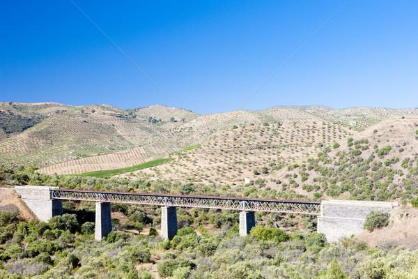 Stock photo: railway viaduct near border of Portugal, Castile and Leon, Spain