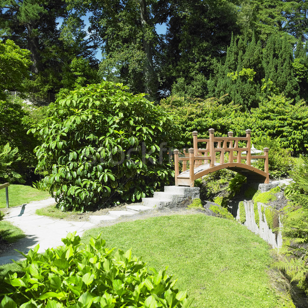 Japanese Garden, Powerscourt Gardens, County Wicklow, Ireland Stock photo © phbcz
