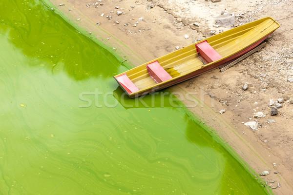 Bateau République tchèque rivière transport extérieur Photo stock © phbcz