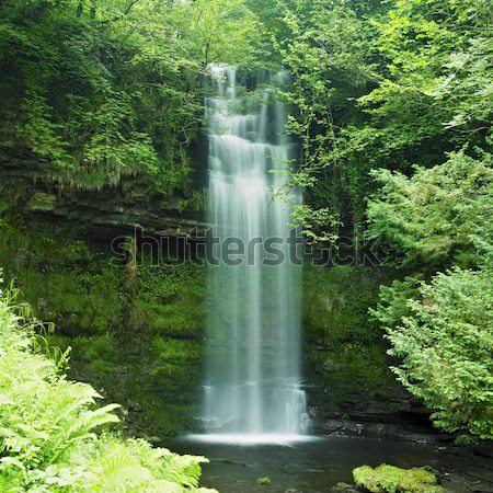Cranny Falls, County Antrim, Northern Ireland Stock photo © phbcz