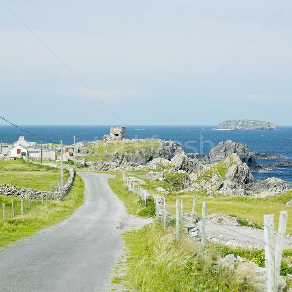 Ruiny zamek Irlandia budynku morza architektury Zdjęcia stock © phbcz