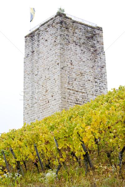 Schwabsburg Castle, Rheinland, Germany Stock photo © phbcz