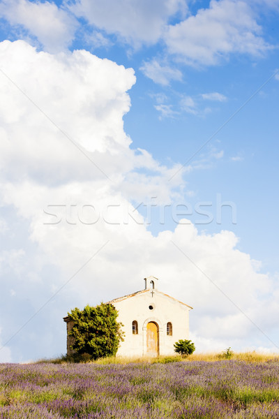 Kapel lavendel veld plateau bloem gebouw planten Stockfoto © phbcz