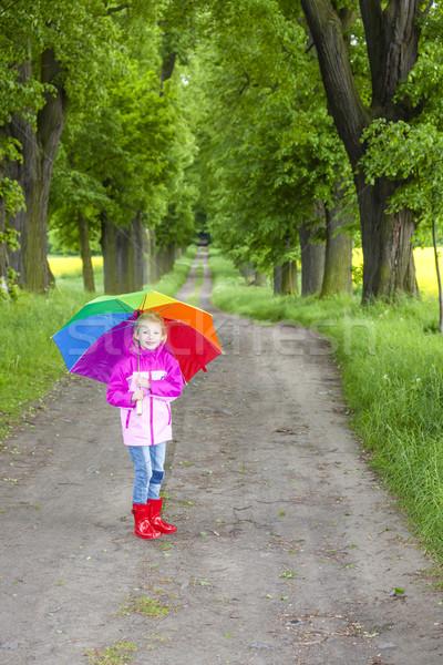 Kislány visel gumicsizma esernyő tavasz sikátor Stock fotó © phbcz