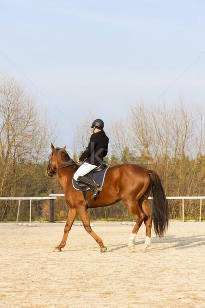 верхом женщины лошади работает молодые Сток-фото © phbcz