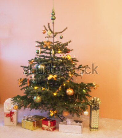 Christmas tree Stock photo © phbcz