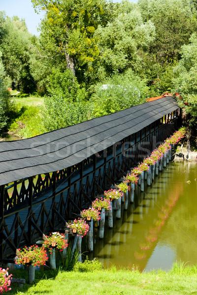 Coberto ponte Eslováquia Foto stock © phbcz