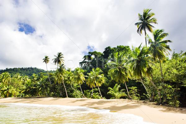 Englishman's Bay, Tobago Stock photo © phbcz
