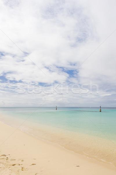 Strand Barbados landschap zee paradijs stranden Stockfoto © phbcz