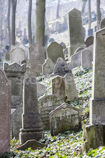 Jewish Cemetery, Trebic, Czech Republic Stock photo © phbcz