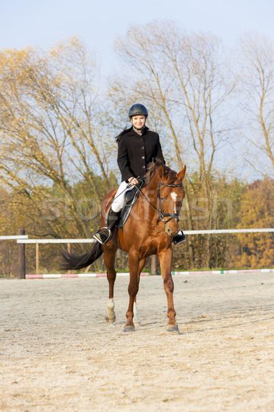 верхом женщины лошади осень животного Сток-фото © phbcz