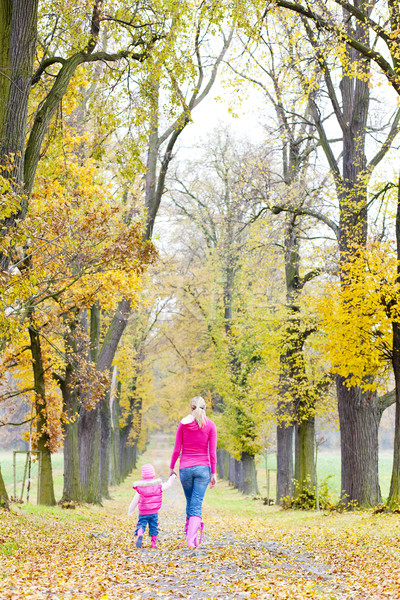 mother with her daughter in autumnal alley Stock photo © phbcz