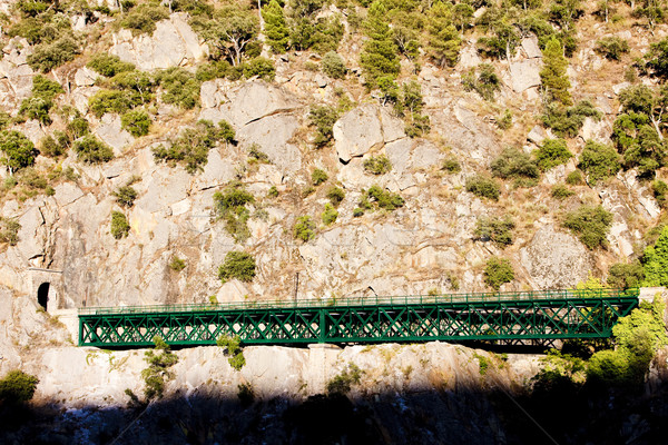 railway viaduct near Tua, Douro Valley, Portugal Stock photo © phbcz