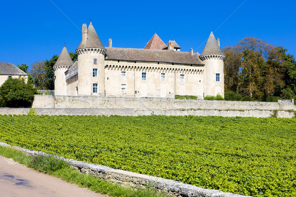 Chateau de Rully with vineyards, Burgundy, France Stock photo © phbcz