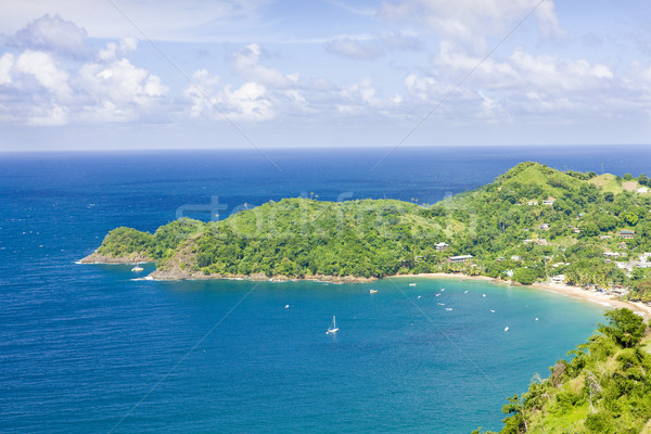 Castara Bay, Tobago Stock photo © phbcz