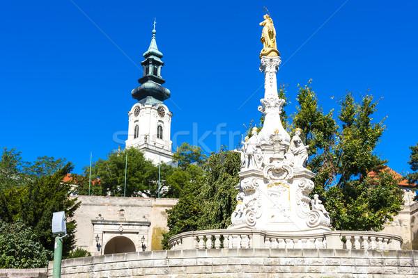 Kolom kasteel Slowakije gebouw reizen architectuur Stockfoto © phbcz