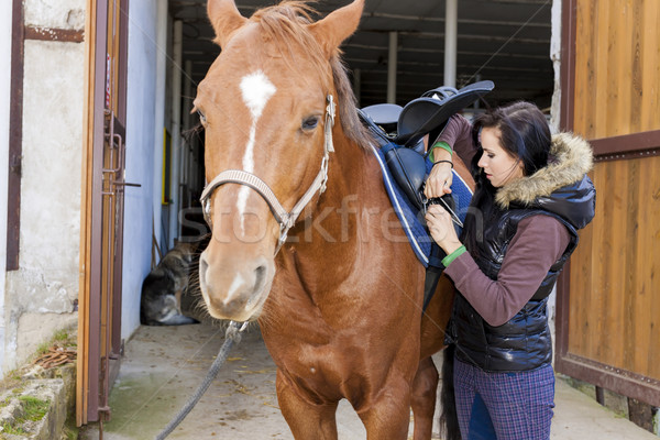 equestrian with her horse Stock photo © phbcz