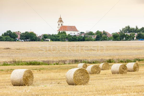 穀物 フィールド チェコ共和国 建物 教会 国 ストックフォト © phbcz