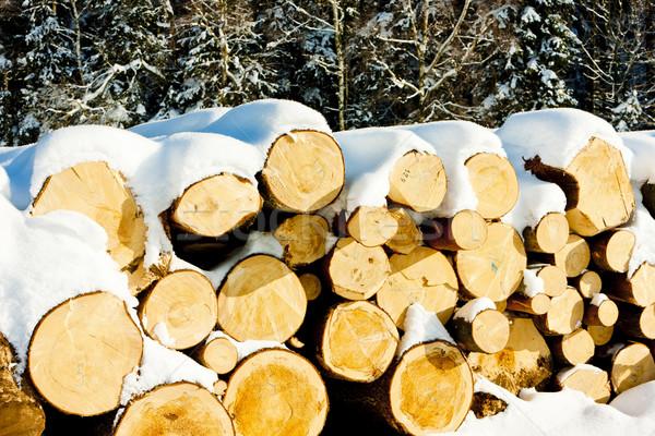 snow covered logs Stock photo © phbcz