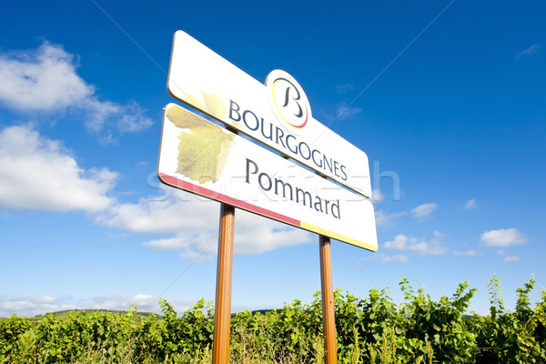 vineyards of Pommard, Burgundy, France Stock photo © phbcz