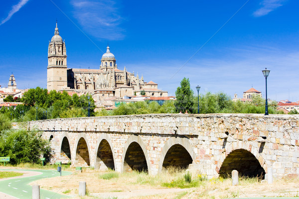 cathedral and Roman bridge of Salamanca, Castile and Leon, Spain Stock photo © phbcz