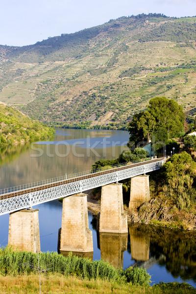 Chemin de fer vallée Portugal paysage Voyage vignoble Photo stock © phbcz