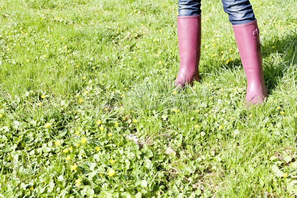 detail of woman wearing rubber boots on spring meadow Stock photo © phbcz
