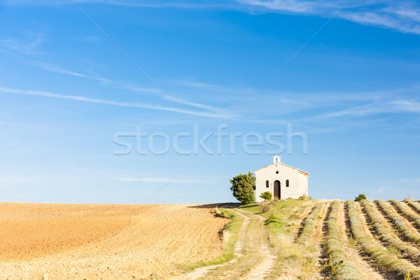 Kapel lavendel veld plateau gebouw reizen architectuur Stockfoto © phbcz