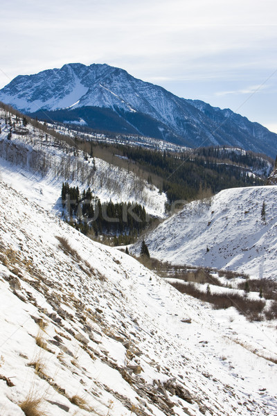 Сан-Хуан гор Колорадо США зима ландшафты Сток-фото © phbcz