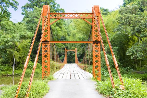 Puente colgante puente edificios arquitectura tropicales aire libre Foto stock © phbcz