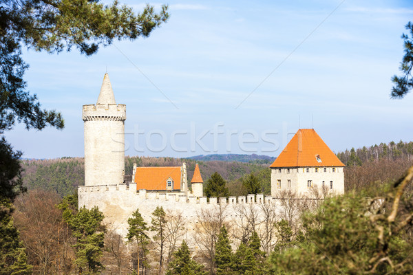 Castillo República Checa edificio viaje arquitectura Europa Foto stock © phbcz