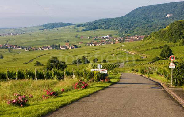 Voegtlinshoffen, Alsace, France Stock photo © phbcz